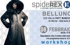 Workshop Belluno 08/02/2019